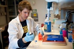 University of Michigan Research